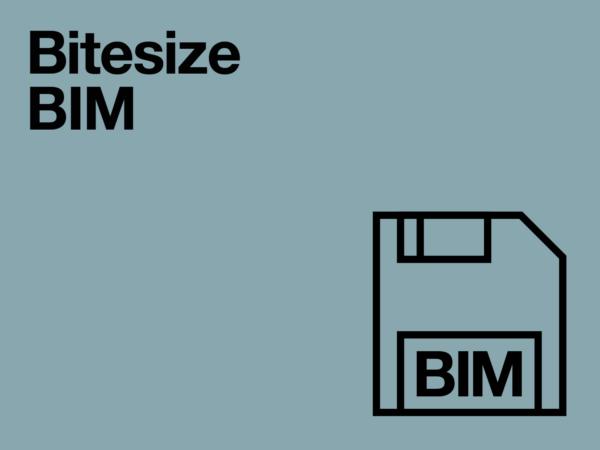 Bitesize BIM event series