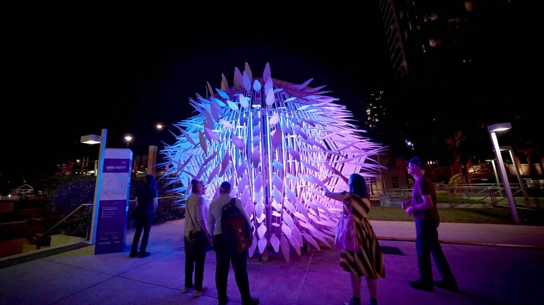The Living Lantern, Brisbane