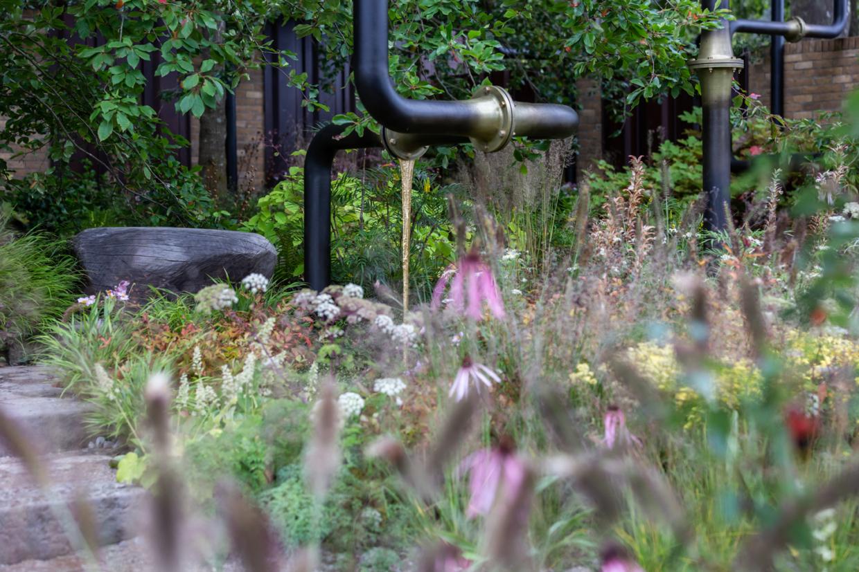 The M&G Garden, Chelsea Flower Show
